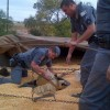 Policia Federal apura origem da 1 tonelada de maconha em Sousas