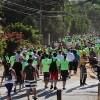 Caminhada Ecológica de Sousas a Joaquim Egídio